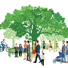 Parks_Edgemont Community